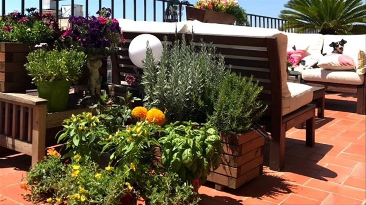 Jardín de terraza