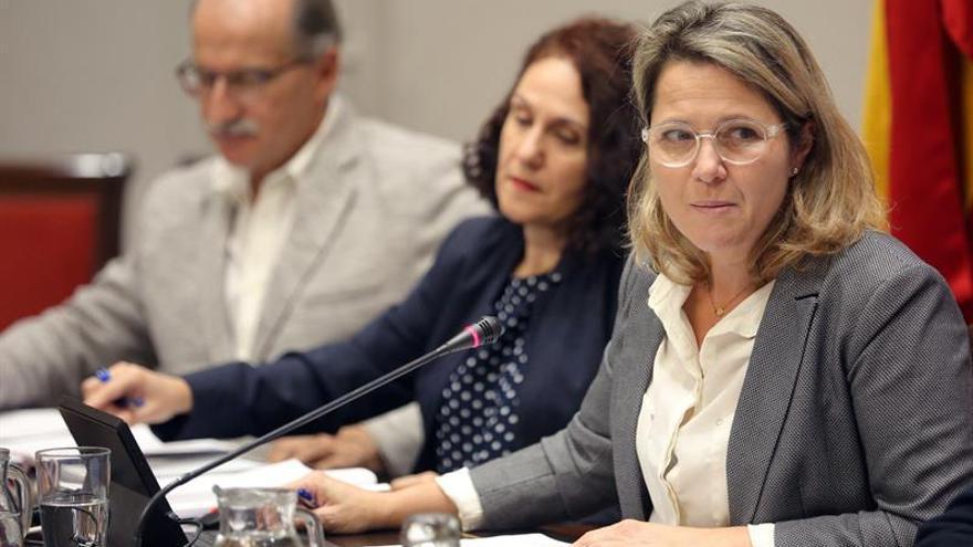 LLa consejera de Agricultura, Ganadería y Pesca del Gobierno de Canarias, Alicia Vanoostende (d), en comisión parlamentaria . EFE/ Cristóbal García
