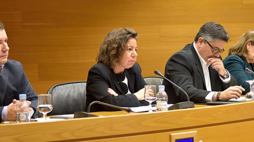La profesora Isabel Lifante en la comparecencia de candidatos al Consejo de Transparencia