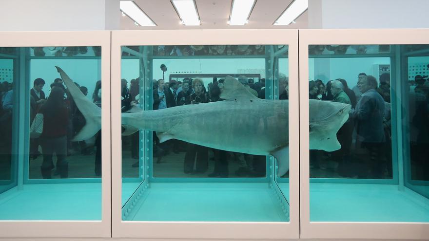 El tiburón en formol de Damien Hirst
