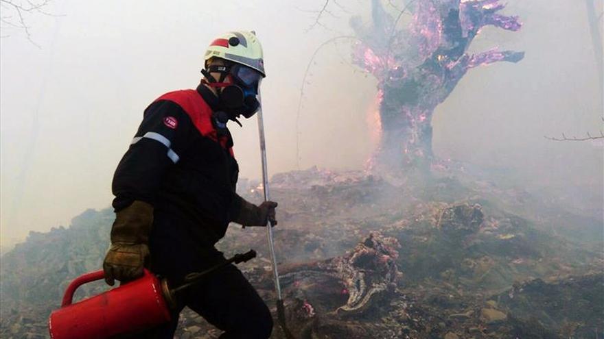 Los bomberos continúan en el incendio de Arantza (Navarra), ya controlado