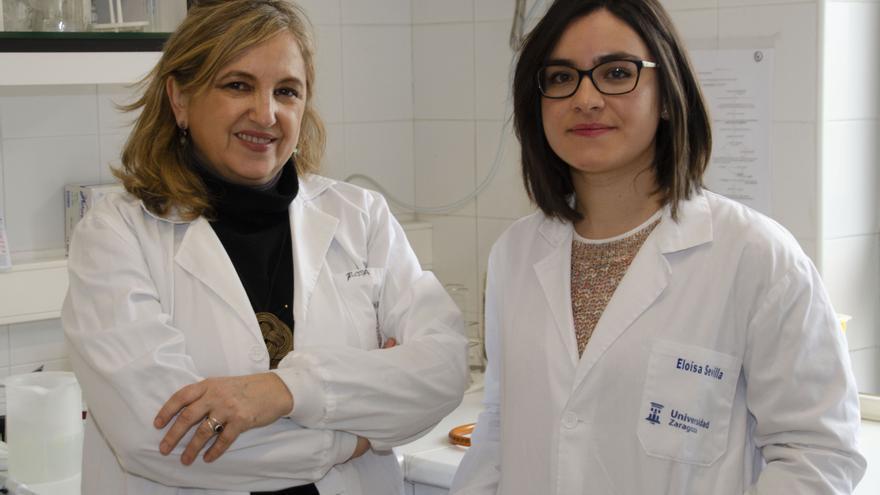 Rosa Bolea y Eloísa Sevilla, las dos investigadoras de la Universidad de Zaragoza que han participado en el estudio.