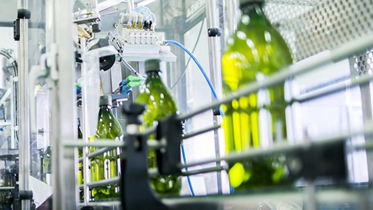 Envasado de aceite de oliva/Archivo