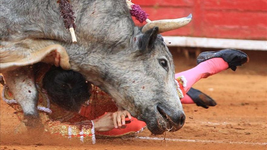 Los menores de edad pueden acceder a las plazas de toros de casi toda España.