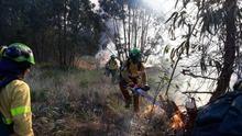 CSIF Andalucía alerta de la falta de efectivos del plan Infoca en plena ola de calor