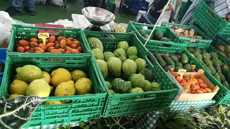 Productos locales de La Palma.