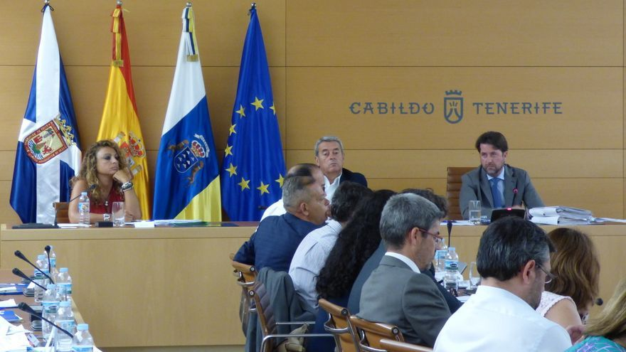 Un momento del Pleno que celebró este viernes el Cabildo de Tenerife