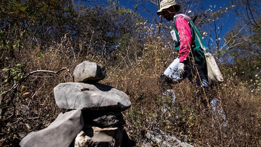 México despliega la mayor brigada de búsqueda de desaparecidos de su historia