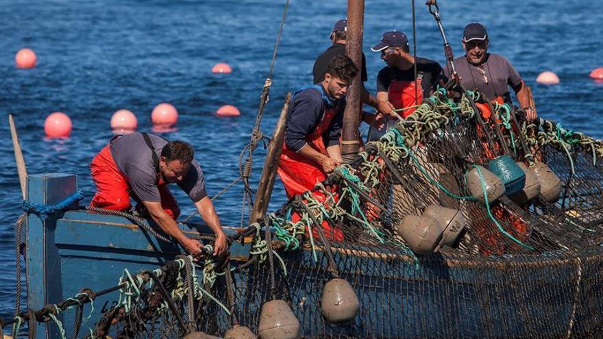 """El PSOE pide alternativas para proteger a la pesca frente al """"brexit"""""""