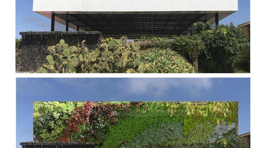Recreación del jardín vertical en la plaza de La Glorieta.