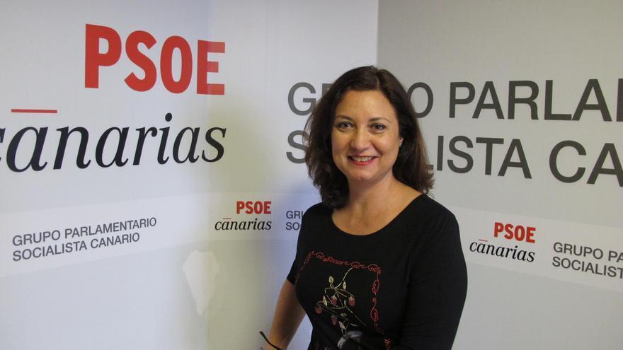 Ventura del Carmen Rodríguez, portavoz de Agricultura y Ganadería del grupo Socialista en el Parlamento de Canaria.