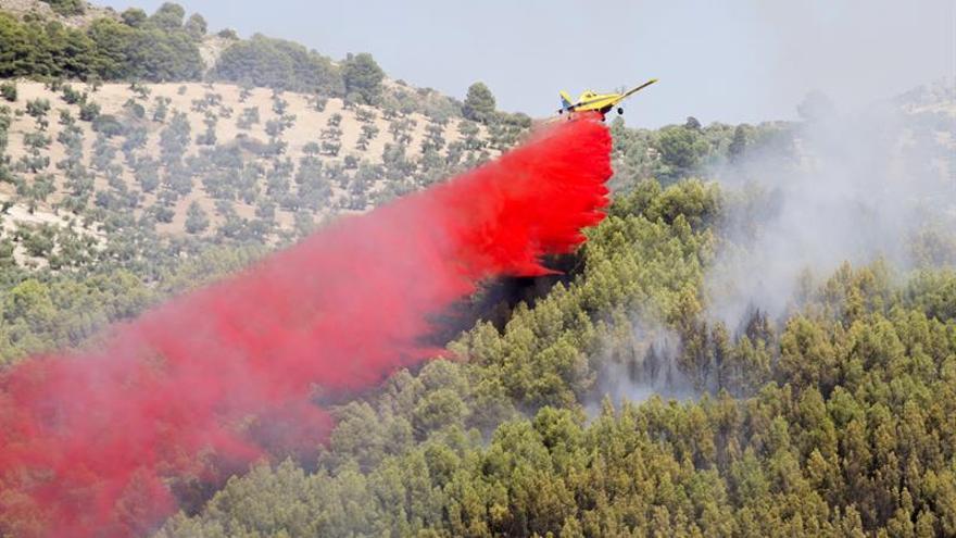 Estabilizado el incendio en una zona de pinar en Jaén