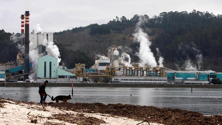 Asociación recurrirá ante Medio Ambiente y la Audiencia Nacional la prórroga a Ence