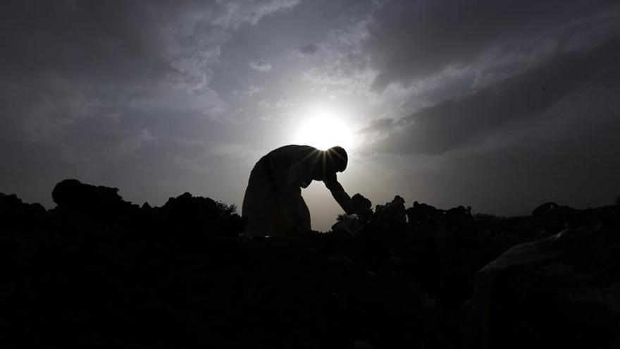 Al menos 16 civiles muertos en bombardeos en dos regiones del sur del Yemen