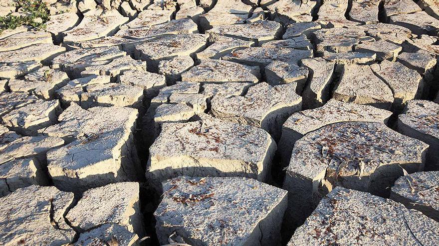 Tierra cuarteada en las marismas del Guadalquivir.
