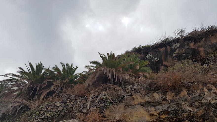 Las nubes cubren el cielo este domingo 22 de octubre, en Santa Cruz de La Palma. Foto: LUZ RODRÍGUEZ.