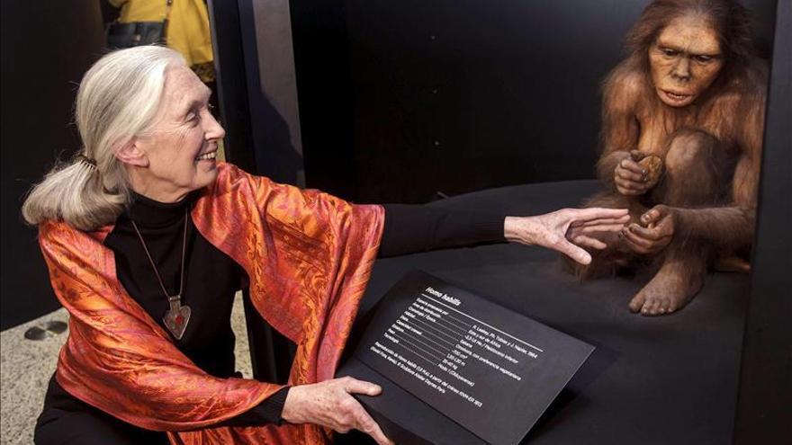 """Jane Goodall pide evitar el uso de animales en """"ciertas celebraciones"""""""