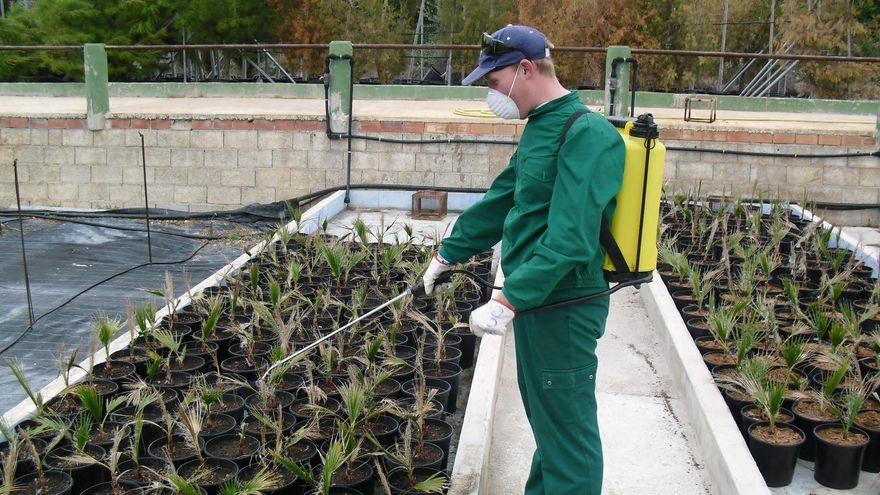 Trabajador de uno de los centros especiales de empleo que recibió las ayudas el pasado año, Fundown Plant.
