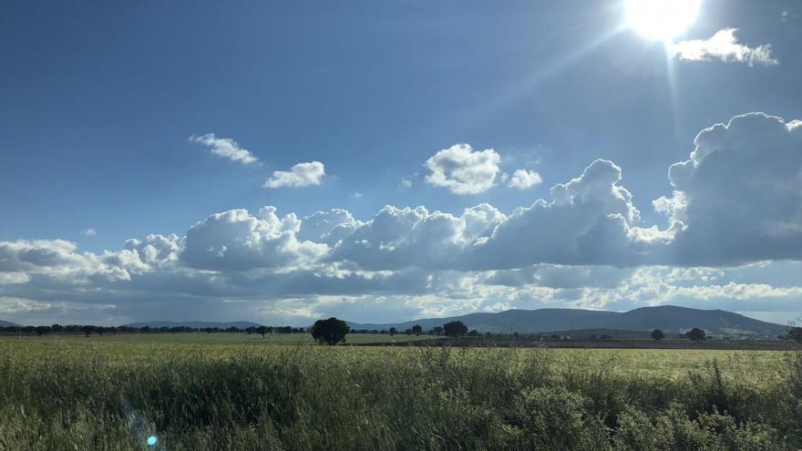 Castilla-La Mancha hace un nuevo pago de ayudas a los agricultores