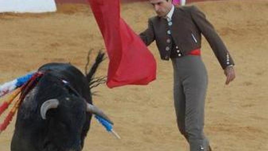 Corrida de toros. (EUROPA PRESS)