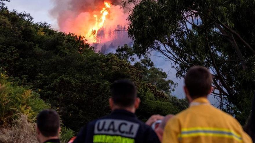 Labores de extinción del incendio originado este sábado en el municipio de grancanario de Valleseco.