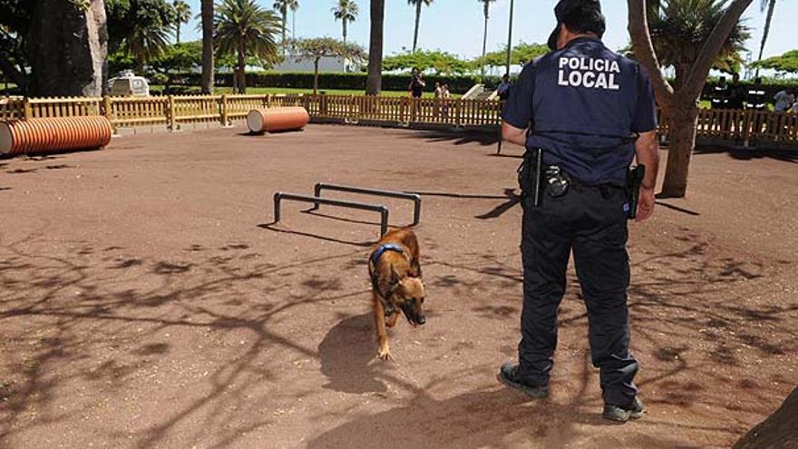 Del nuevo parque para perros #7