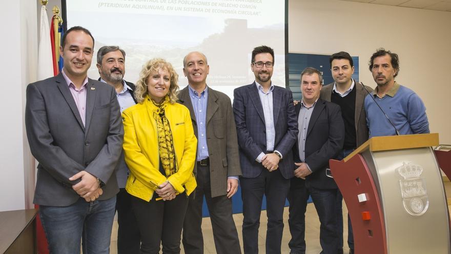 Cantabria realiza un estudio del helecho común para prevenir incendios y obtener insecticida
