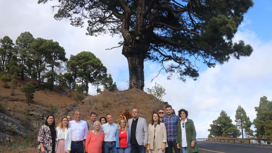 Imagen junto al Pino del Consuelo.