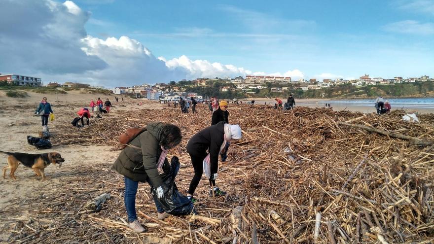 Cerca de 400 personas participan en la limpieza de playas