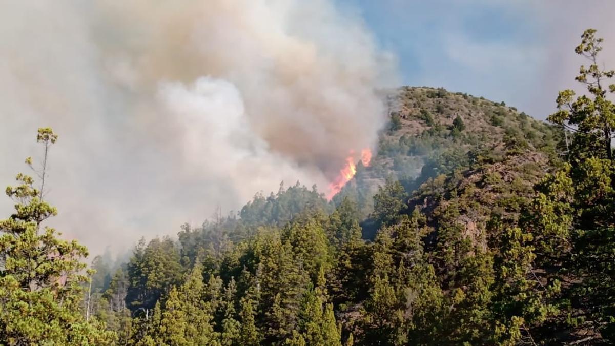 El fuego en Chubut y Río Negro causó desastres humanos, medioambientales y materiales.
