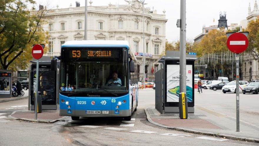 El transporte en autobús facturará un 4,5 % más en 2019, hasta 3.600 millones