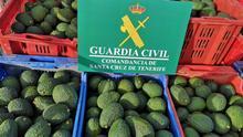 Cinco detenidos en el norte de Tenerife por supuestamente robar unos 1.000 kilos de aguacates
