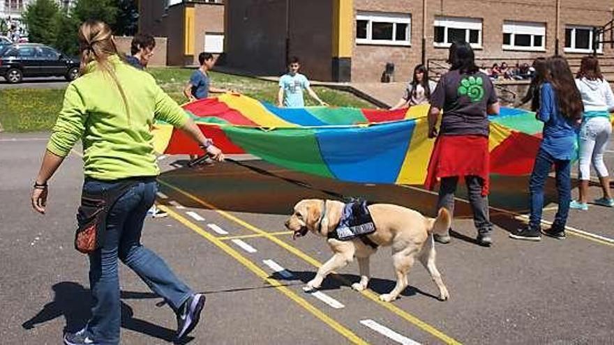 Trabajo con perros en un instituto de Ribadesella (Asturias)
