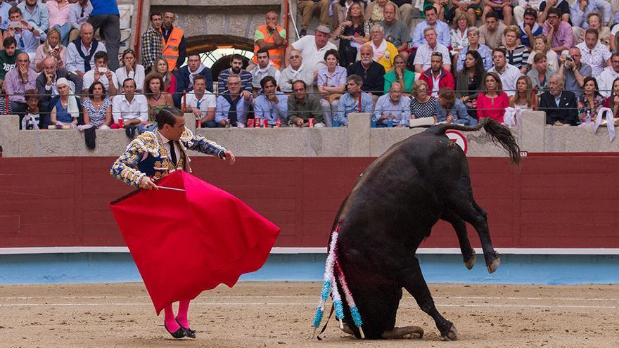 Los toros sufren todo tipo de daños durante las corridas. Foto: colectivobritches.com