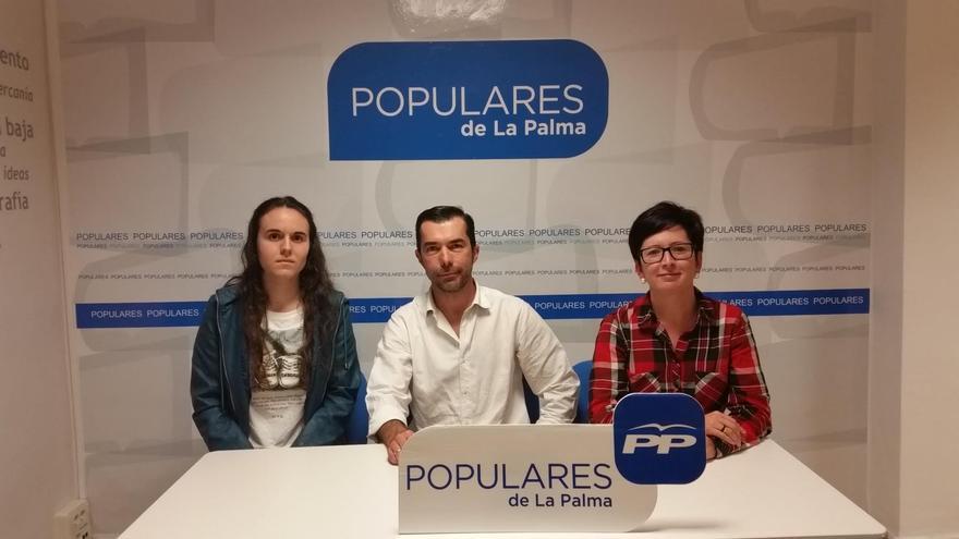 Grupo del PP en el Ayuntamiento de Tijarafe.