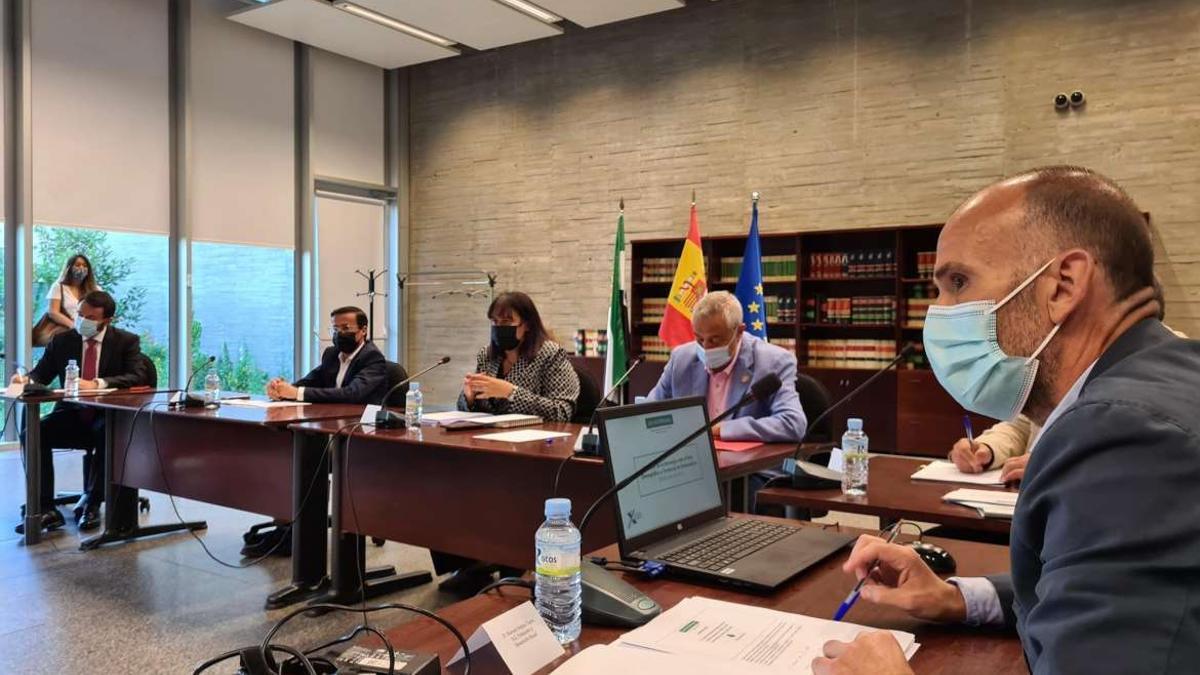 La consejera de Agricultura, Desarrollo Rural, Población y Territorio, Begoña García, ha presentado este lunes el borrador de la Estrategia ante el Reto Demográfico