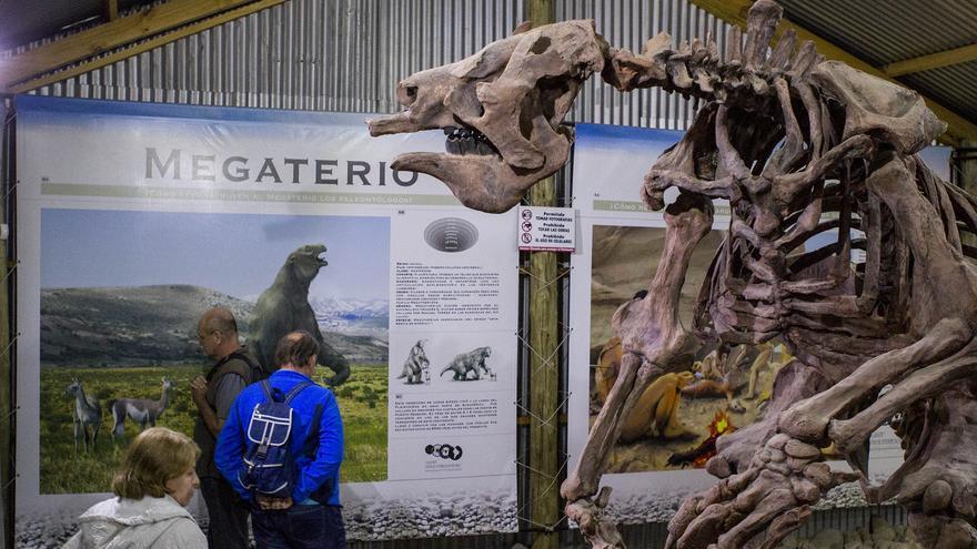 Fósil de un Megaterio en el Centro de Interpretación Histórica de El Calafate.
