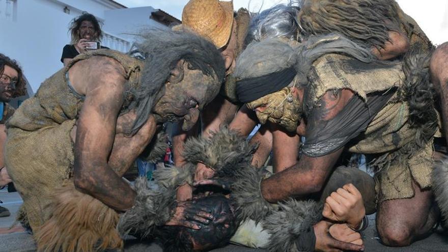 Treinta carneros vuelven a embetunar los vecinos de Tigaday, en El Hierro