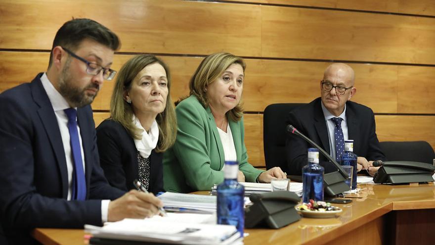 Comparecencia de la consejera de Educación y Cultura, Rosa Ana Rodríguez FOTO: Carmen Toldos.