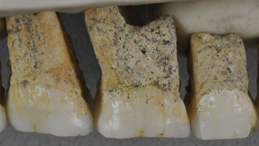 Restos del nuevo homínidos descubierto en Filipinas