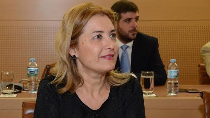 Pino de León, directora del Instituto Canario de la Vivienda, en una imagen de su etapa en el Cabildo tinerfeño