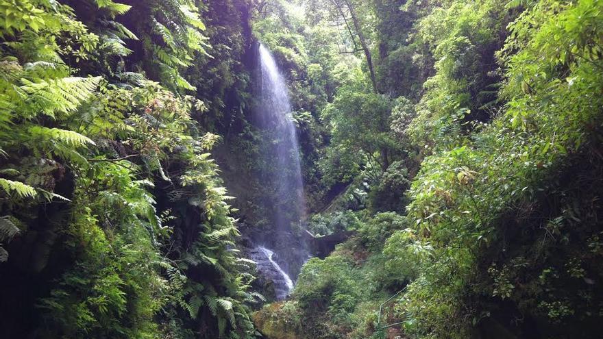 Imagen de archivo de la cascada del bosque de Los Tilos, en el municipio de San Andrés y Sauces.
