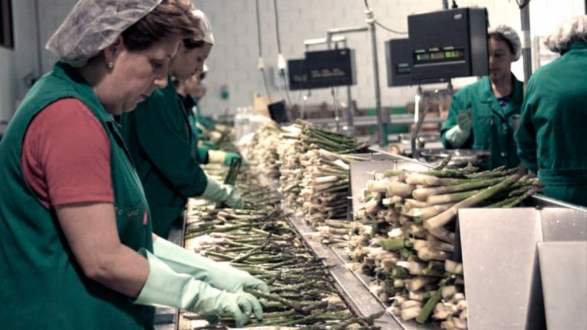 A partir del mes de enero, el Repro se extendió a los sectores críticos y al sector salud.