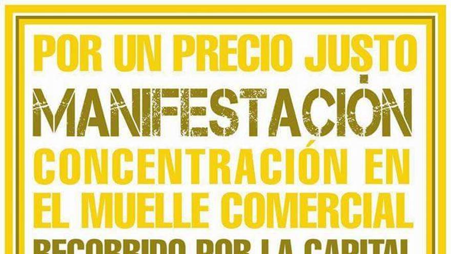 Cartel de la protesta del 12 de este mes, viernes, en La Palma