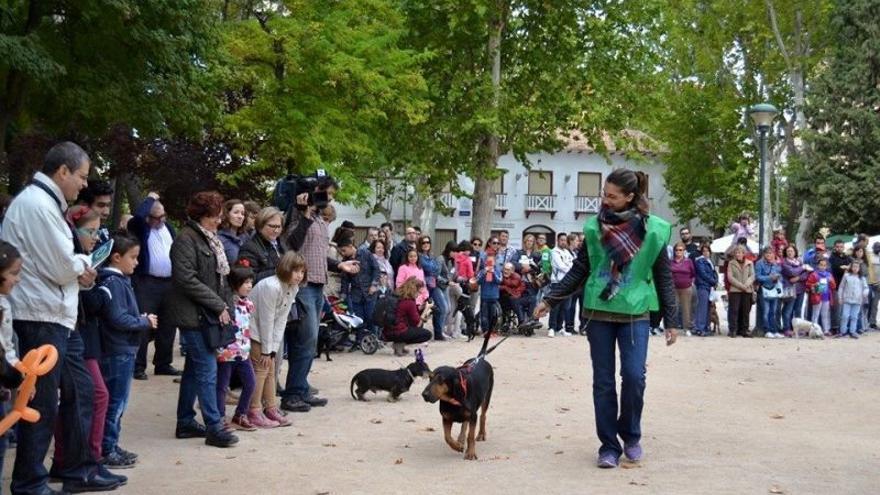 FOTO: Dejando Huella Albacete