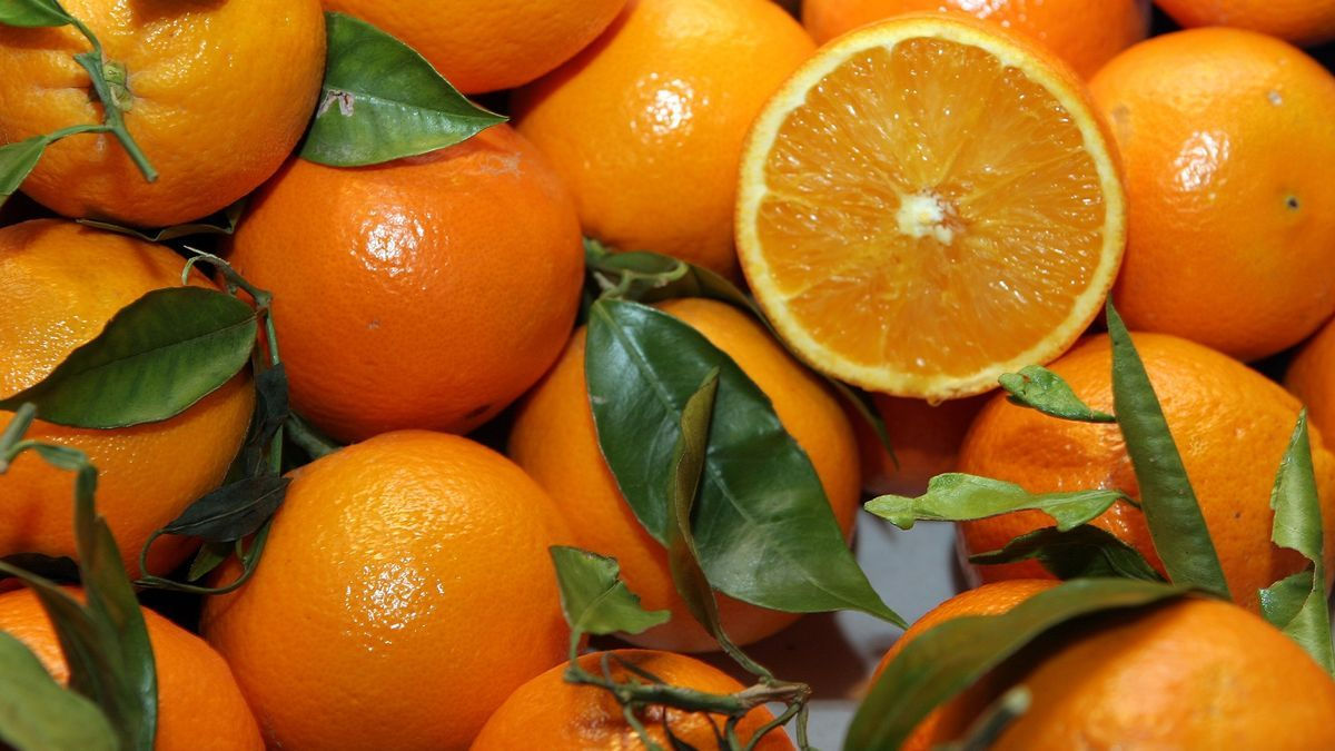 El sector citrícola es uno de los principales proveedores de la industria del zumo.