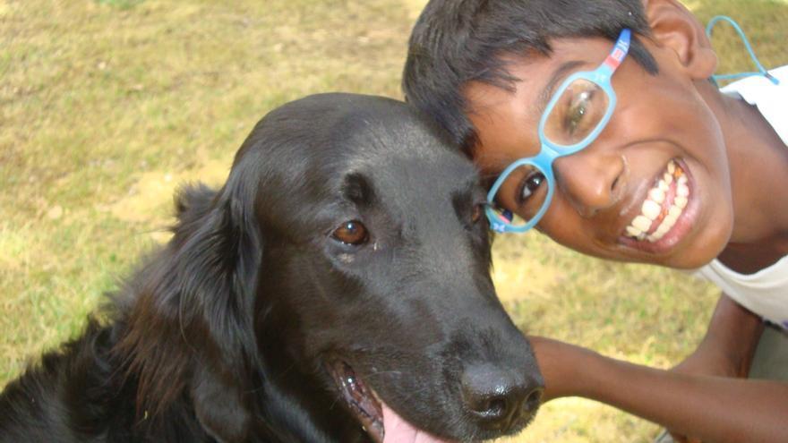 Mahesh, un niño de 11 años con Daño Cerebral Sobrevenido, con su perra Hampa, cuya foto activó su memoria cuando estaba en el hospital.
