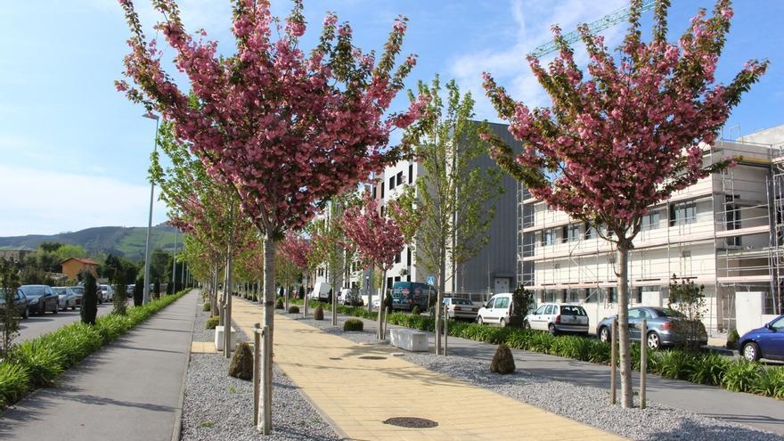 El Ayuntamiento ofrece visitas guiadas por el Bulevar Ronda