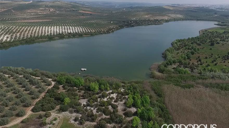 Córdoba celebra el Día Mundial de los Humedales con una suelta de aves en la Laguna de Zóñar