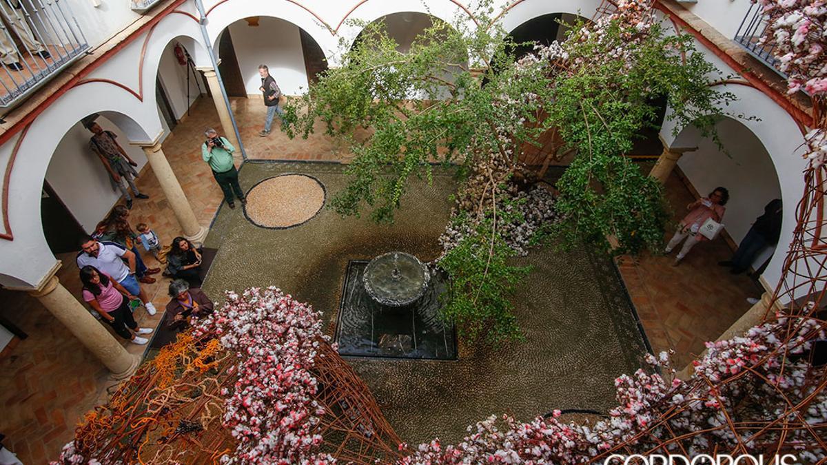 Instalación de Flora 2019 en la Casa Góngora